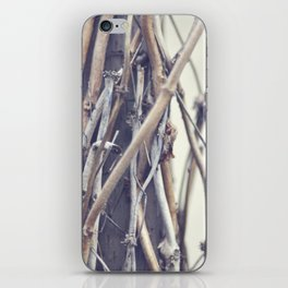 bundled iPhone Skin