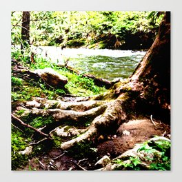 The Foot of Nature Canvas Print