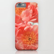 Paeonia #6 iPhone 6 Slim Case