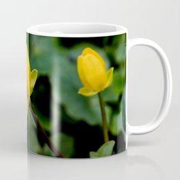 D. o.f. Coffee Mug