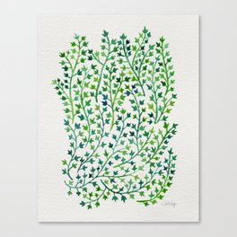 Summer Ivy Canvas Print