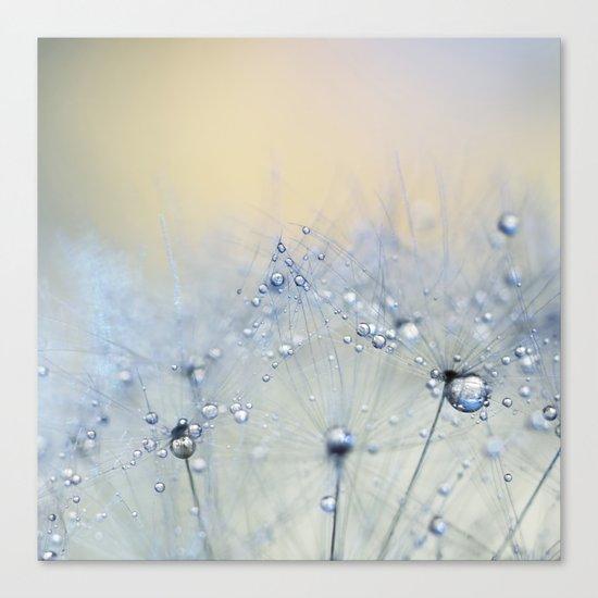 ice blue dandelion Canvas Print