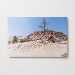 Trees & Rocks - Zion National Park Metal Print