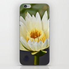 Lotus Flower iPhone & iPod Skin