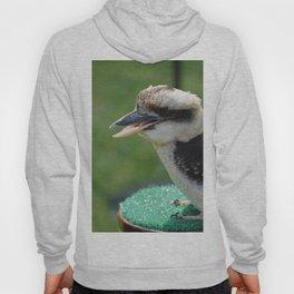 Kookaburra. Hoody