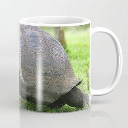 Galapagos Giant Tortoise Coffee Mug