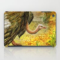 ostrich iPad Cases featuring Ostrich by Natalie Berman