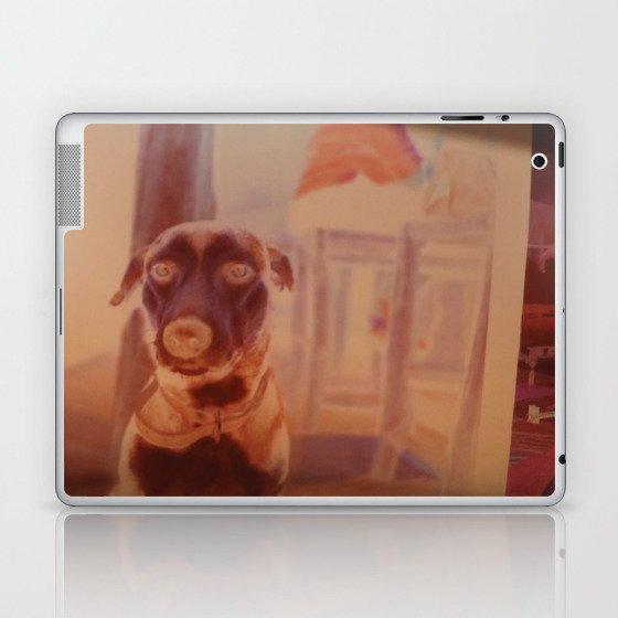 beach dog Laptop & iPad Skin