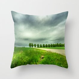 Countryside Landscape With Green Grass, Trees and Dramatic Sky Throw Pillow
