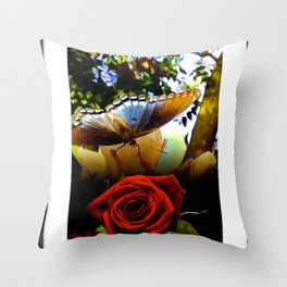 The Butterfly And The Rose Framed Throw Pillow