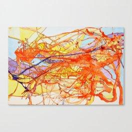 Anatomy Of Lava Canvas Print