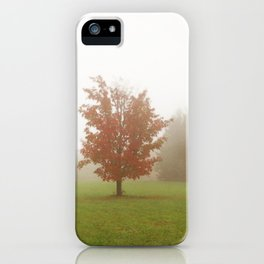 Maple Tree in Fog with Fall Colors iPhone Case