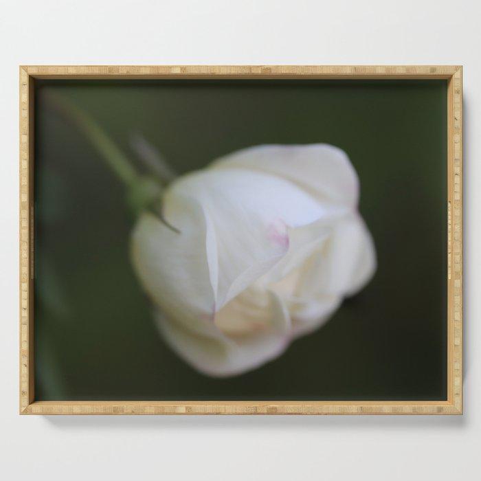White rosebud Serving Tray