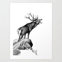 Stag Roaring in the Rut Art Print