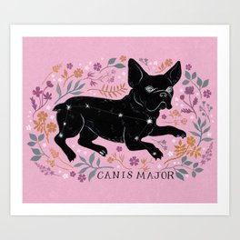 Canis Major Art Print