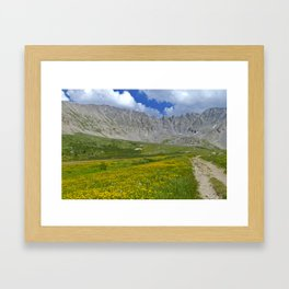 Mayflower Gulch brimming with wildflowers Framed Art Print