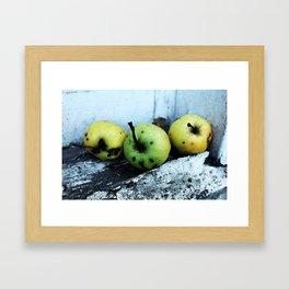 Sad Apples Framed Art Print
