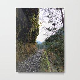 Mossy Mountain Trail Metal Print