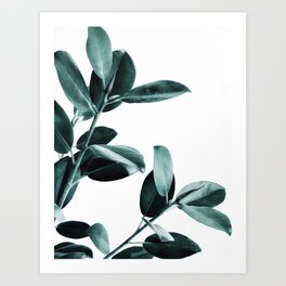 Natural obsession Art Print