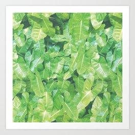 SUMMERTIME PALM Art Print