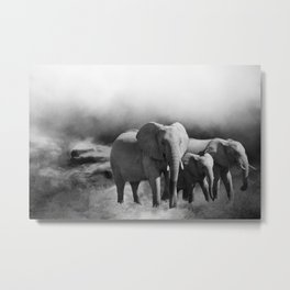 Elephants Shades Of Grey Metal Print