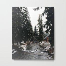winter mood. Metal Print