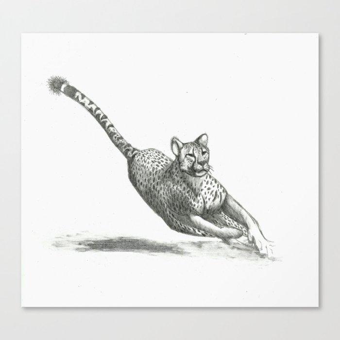 Running Cheetah Drawing Canvas Print by scarletwild