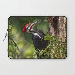 Pileated Woodpecker 6340 Laptop Sleeve