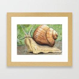 Snail 'Stache Framed Art Print