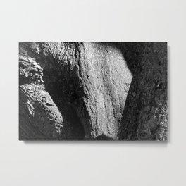 massive and wise tree Metal Print
