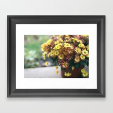 Yellow Fall Flowers Framed Art Print