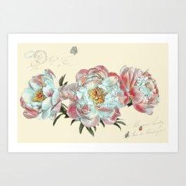 vintage peonies Art Print