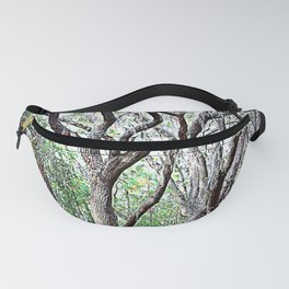 Solitude For The Oak Fanny Pack