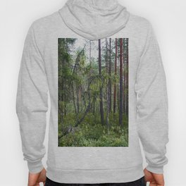Home of the ancient ones Hoody