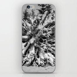 Driftwood 2 iPhone Skin