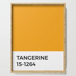 Tangerine Pantone Chip • Orange • Warm Tones •Summertime • Modernist • Minimal • Graphic Designer Serving Tray