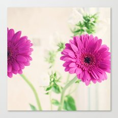 Gerberas and Phlox Canvas Print