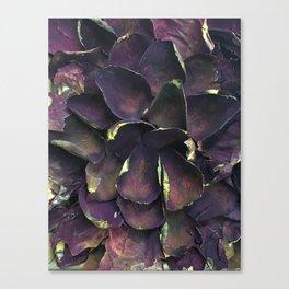 Rose Gold Canvas Print