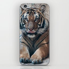 Embrace your Wild Side iPhone Skin