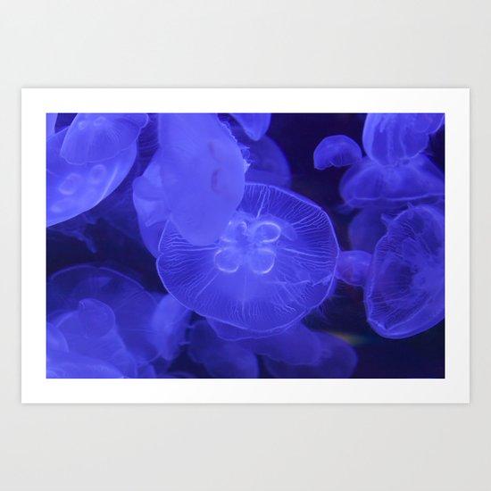 Moon Jelly Fish Art Print