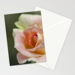 Flower Five Stationery Cards
