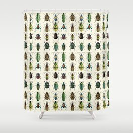 Jeweled Beetles  Shower Curtain