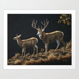 Mule Deer Buck and Doe Art Print