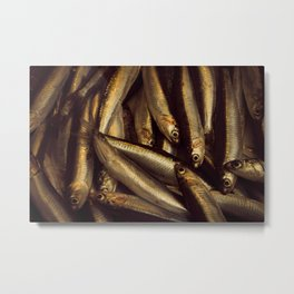 Small fish caught in the market to be sold as fresh food. Metal Print