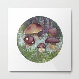Porcini Mushrooms Metal Print