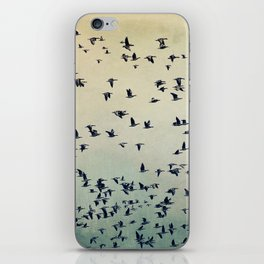 The flight iPhone Skin