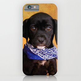 Cute Lab Puppy iPhone Case