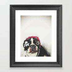 Pirate Terrier Framed Art Print