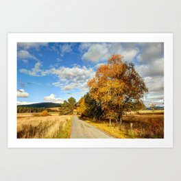 Autumn Splendor Yellow Take the Slow Road Art Print