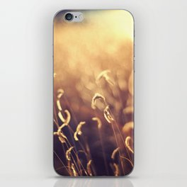 For The Dream iPhone Skin